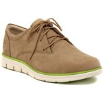 Derby Timberland PLAIN TOE OXFORD  TAUPE