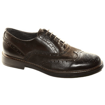 Scarpe Uomo Derby & Richelieu Made In Italia SCARPA ELEGANTE TRIBE 10700 MORO Marron