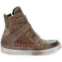 Scarpe Donna Sneakers alte Beverly Hills Polo Club Sneakers marrone