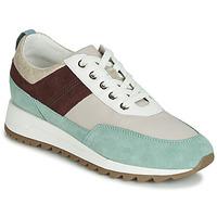 Scarpe Donna Sneakers basse Geox D TABELYA Beige / Marrone / Verde