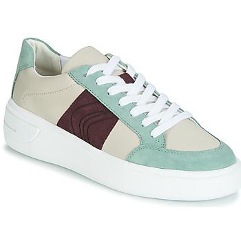 Scarpe Donna Sneakers basse Geox D OTTAYA Crema / Verde