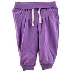 Abbigliamento Bambino Pantaloni da tuta Chicco Pantalone Tuta Polsino Neonati lilla