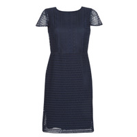 Abbigliamento Donna Abiti corti Lauren Ralph Lauren NAVY SHORT SLEEVE DAY DRESS Marine