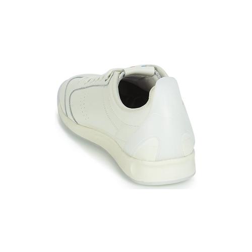 Sneakers Kickers Bianco Kick Basse 18 dxhsCtQBro