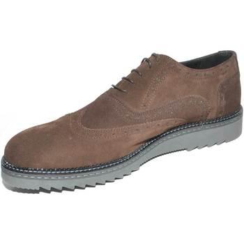 Scarpe Uomo Derby Malu Shoes SCARPE UOMO STRINGATA SCAMOSCIATA TESTA DI MORO MADE IN ITALY F MARRONE