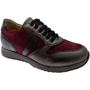 Scarpe Donna Sneakers basse Calzaturificio Loren LOC3818bo tortora