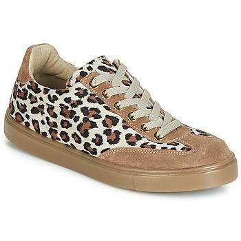 Scarpe Donna Sneakers basse André ARDOISE Leopard