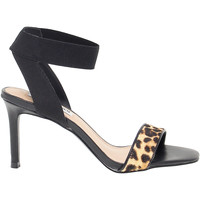 Scarpe Donna Sandali Steve Madden Sandalo con tacco  FONDU-LEO multicolore,nero,viola