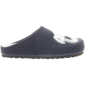 Scarpe Donna Pantofole Westlake BORD 249 -UNICA - Pantofola in  Blu