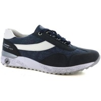 Scarpe Uomo Sneakers basse Canguro 213 BLUE