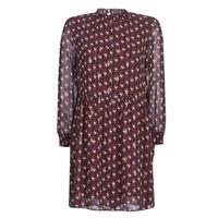 Abbigliamento Donna Abiti corti Betty London LILY Bordeaux