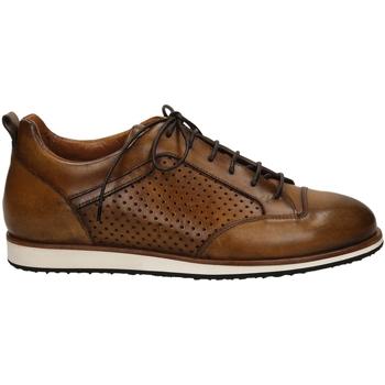 Scarpe Uomo Sneakers basse Edward's DARK cuoio-cuoio