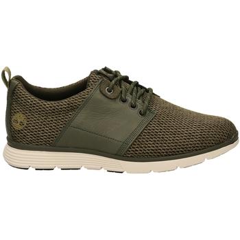Scarpe Uomo Sneakers basse Timberland KILLINGTON L/F grale-verde