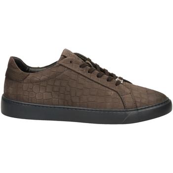 Scarpe Uomo Sneakers basse Café Noir GINNICA NABUK STAMPA marro-marrone