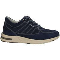 Scarpe Uomo Sneakers basse Valleverde 17845 NAVY