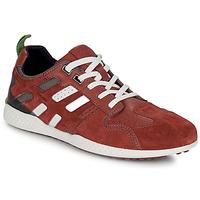 Scarpe Uomo Sneakers basse Geox U SNAKE.2 Marrone / Brique