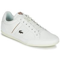 Scarpe Uomo Sneakers basse Lacoste CHAYMON 319 1 Bianco