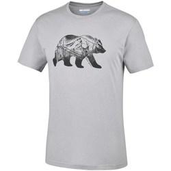 Abbigliamento Uomo T-shirt maniche corte Columbia Baker Brook Grigio