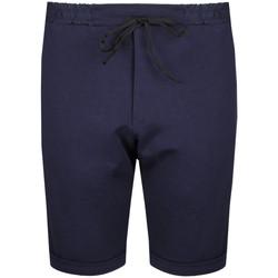 Abbigliamento Uomo Shorts / Bermuda Inni Producenci  Blu