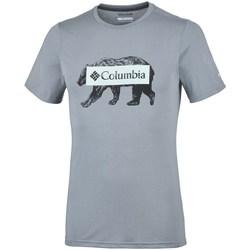 Abbigliamento Uomo T-shirt maniche corte Columbia Box Logo Bear Grigio