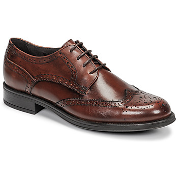 Scarpe Uomo Derby Carlington LOUVIAN Marrone