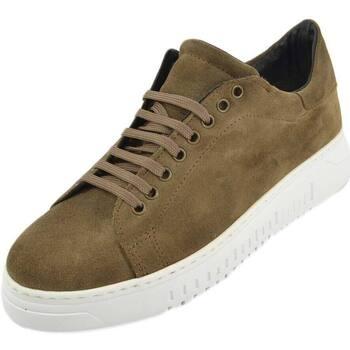Scarpe Uomo Sneakers basse Malu Shoes Sneakers uomo bassa in vero nubuk tortora con fondo alto bianco MARRONE