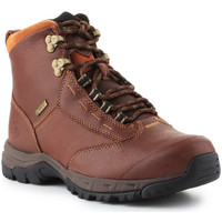 Scarpe Donna Stivaletti Ariat Berwick lace GTX Insulated 10016298 brown