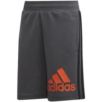 Abbigliamento Unisex bambino Shorts / Bermuda adidas Originals DV0811 Grigio