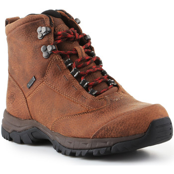 Scarpe Donna Trekking Ariat Trekking shoes  Berwick Lace Gtx Insulated 10016229 brown