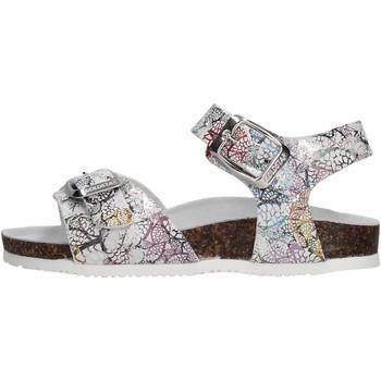 Scarpe Bambina Sandali Gold Star - Sandalo ghiaccio 8846Y GRIGIO