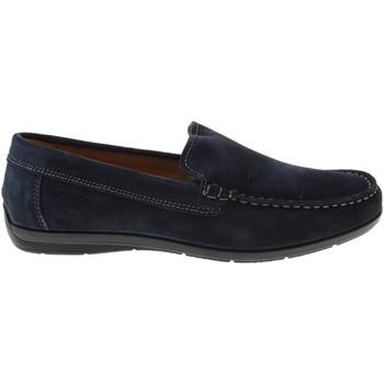 Scarpe Uomo Mocassini Enval scarpe uomo mocassino 3235633 BLU Blu