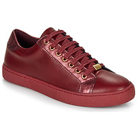 Scarpe Donna Sneakers basse André BERKELEY Bordeaux