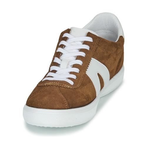 Gilot Basse Sneakers Uomo Gratuita 4900 Camel Consegna Scarpe André Onkw0X8P