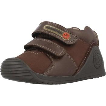 Scarpe Bambino Sneakers alte Biomecanics 181145 Marrone