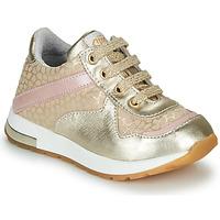 Scarpe Bambina Sneakers basse GBB LELIA Oro / Beige