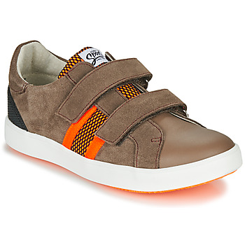 Scarpe Bambino Sneakers basse GBB AVEDON Marrone