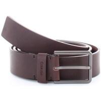 Accessori Uomo Cinture Calvin Klein Accessories K50K504889 Marrone