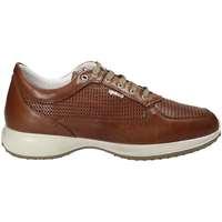Scarpe Uomo Sneakers basse IgI&CO ATRMPN-07391 Marrone