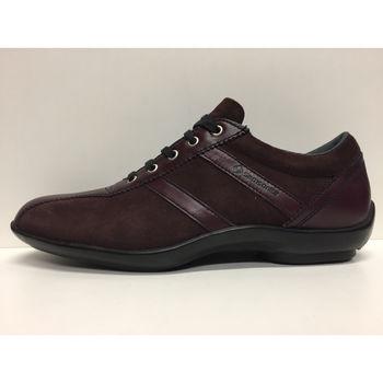 Scarpe Donna Sneakers basse Samsonite 252816461734 Viola