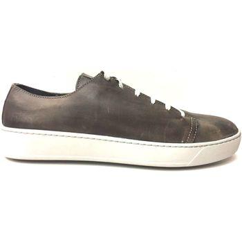 Scarpe Uomo Sneakers basse Pregunta ATRMPN-09298 Marrone
