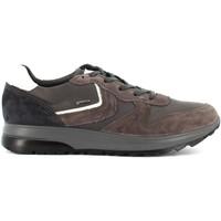 Scarpe Uomo Sneakers basse IgI&CO scarpe uomo sneakers basse in gore-tex 4134822 Antracite