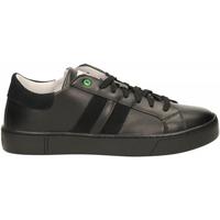 Scarpe Uomo Sneakers basse Womsh KINGSTON black