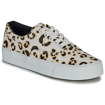 Scarpe Donna Sneakers basse Superdry CLASSIC LACE UP TRAINER Leopard