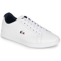Scarpe Uomo Sneakers basse Lacoste CARNABY EVO TRI1 SMA Bianco