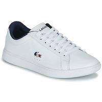 Scarpe Donna Sneakers basse Lacoste CARNABY EVO TRI 1 SFA Bianco / Marine / Rosso