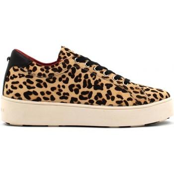 Scarpe Donna Sneakers basse Apepazza scarpe donna sneakers basse 9FSLW01/PONY SELINE Leopardato