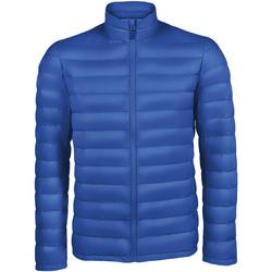 Abbigliamento Uomo Piumini Sols WILSON PADDED MEN Azul