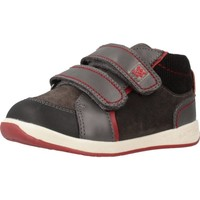 Scarpe Bambino Sneakers basse Garvalin 191312 Grigio