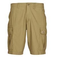 Abbigliamento Uomo Shorts / Bermuda Napapijri NOTO 4 Camel