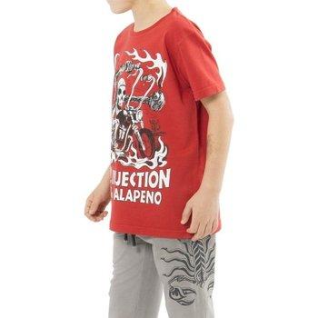 Abbigliamento Bambino T-shirt maniche corte Scorpion Bay T-Shirt Bambino Rossa Rosso